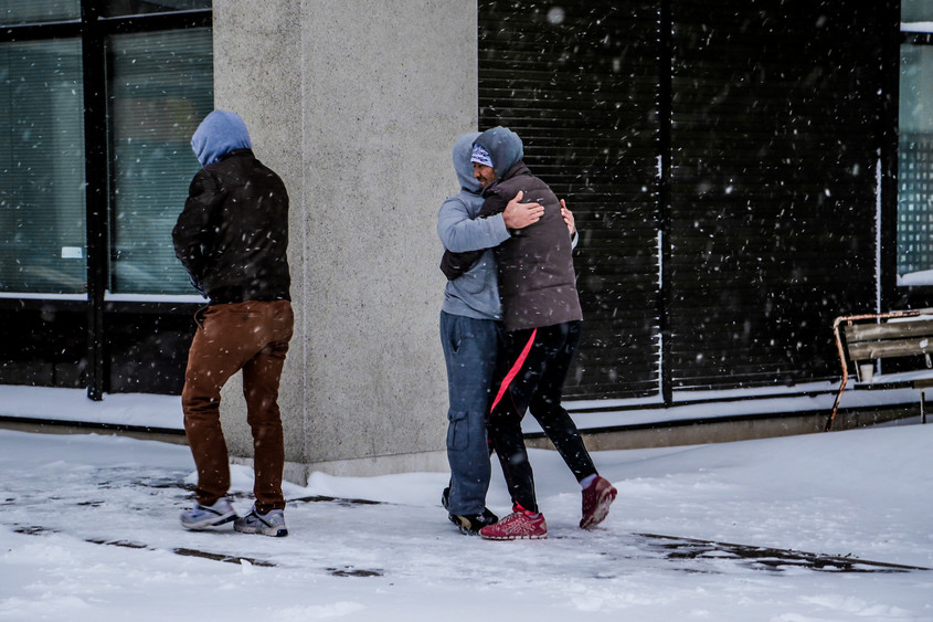 A second cycle. Daffer gives a hug for a friend because he got so happy after first snow.