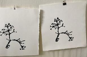Prints in progress.