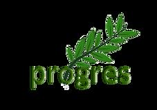 progresFINALsmall.png