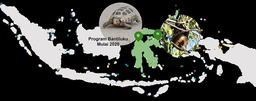 Program PROGRES.png