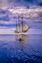 Keep calm and sail through Covid!