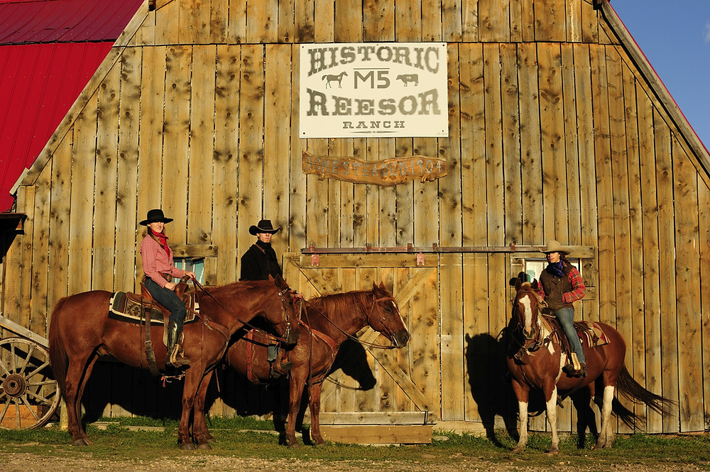 Historic Reesor Ranch Cypress Hills