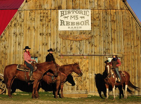 Pressemeldung: Historic Reesor Ranch gewinnt bei den Canadian Tourism Awards
