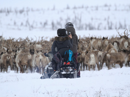 Pressemeldung: Tundra North Tours ist neue Canadian Signature Experience