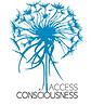 logo-access-bars.png