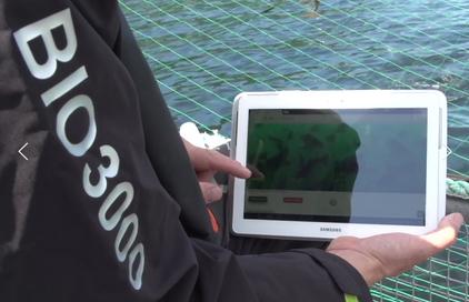 Control y ajustes estimador Biomasa