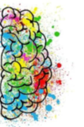 brain-droit-2062057_640.jpg