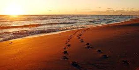spiaggia piedi.jpg