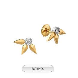 ear7.jpg