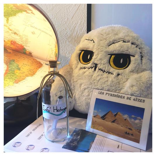 Le tour du monde avec « Info' Hedwige » 🦉
