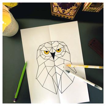 La chouette Hedwige symétrique 📐