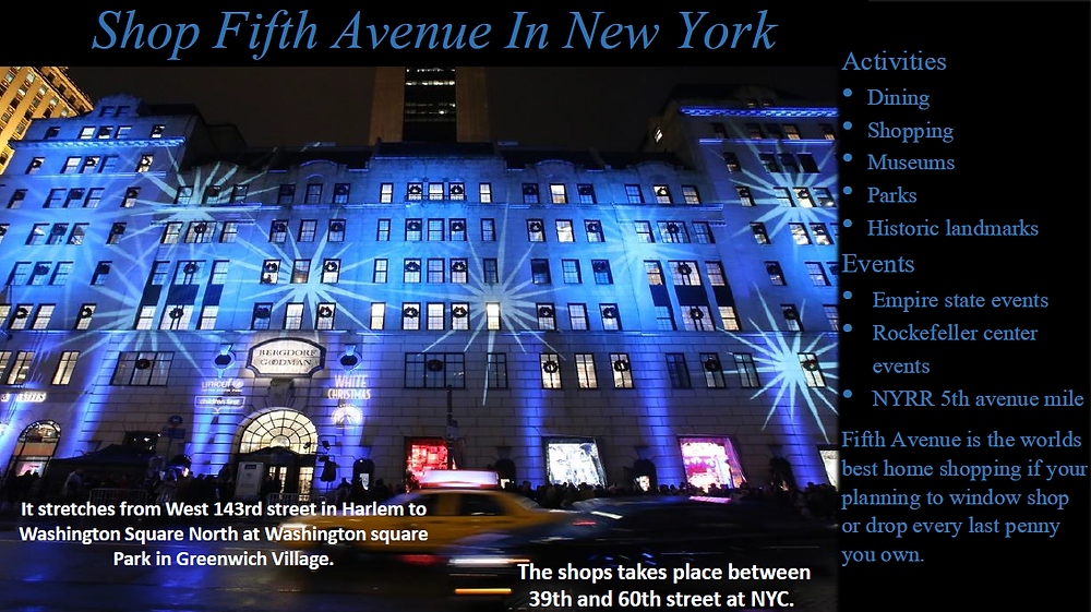 Ms. Brisa, however, knows shopping on Fifth Ave. will basically bankrupt you if you're not careful!