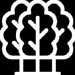 economia-verde.png