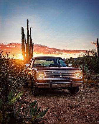 Saguaro Cargo