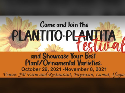 Lamut, Ifugao to hold 'Plantito-Plantita Festival'