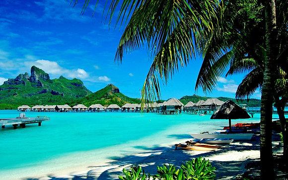 Vacation Option 1