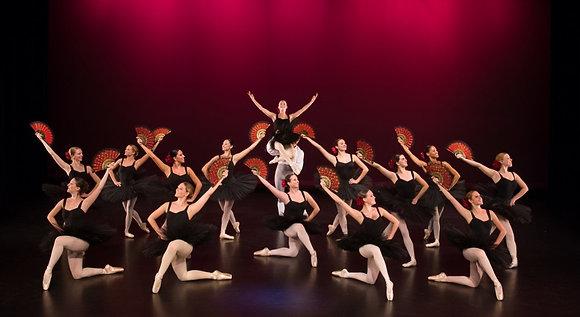 Dance Concerts/Recitals/Live Bands 1 Camera