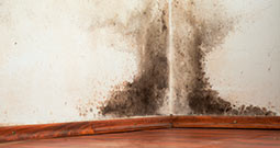Water Damage Eau Claire, Commercial Water Damage Eau Claire, Flood Remediation Eau Claire, Flooded Apartment Cleanup Eau Claire, Frozen Pipe Water Damage Eau Claire, Home Water Damage Eau Claire, Sewage Damage Eau Claire, Water Damage Cleanup Eau Claire, Water Damage Repair Eau Claire, Water Damage Restoration Eau Claire, Water Damage Specialist Eau Claire, Water Removal Eau Claire, Water Restoration Company Eau Claire