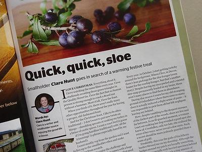 Clare Hunt Countryside Magazine Column.j