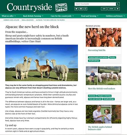 Countryside screenshot alpacas .png