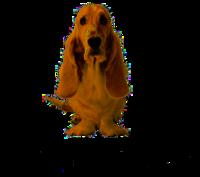 200px-Hush_Puppies_logo