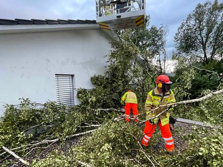 Baum fiel auf Haus