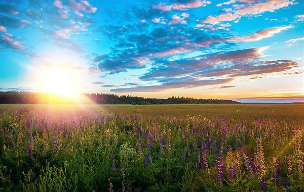 green-meadows-near-mountain-under-calm-s