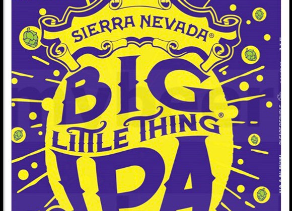 Big Little Thing