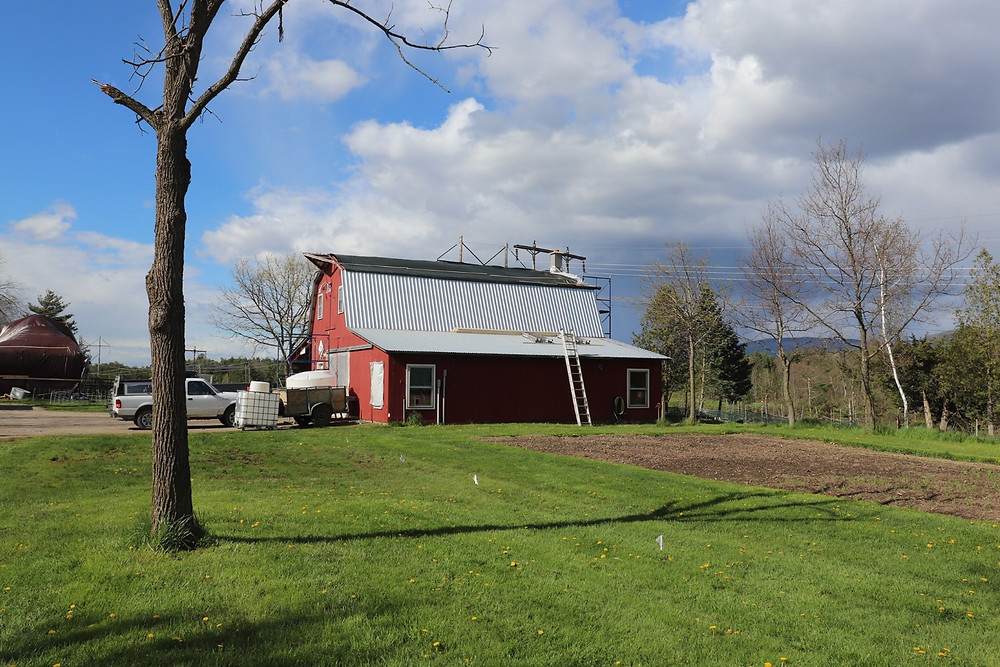 Red barn with a ladder leaning against a partially replaced silver roof.