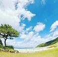 #高浜海水浴場  #beachclean.jpg