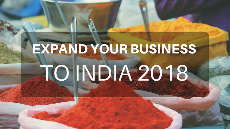 Business Mission to India