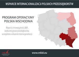 Wsparcie internacjonalizacji polskich przedsiębiorstw cz.II