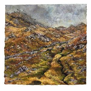 peat track 72.jpg