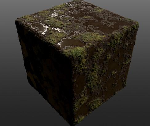 Mossy-Mud2.jpg