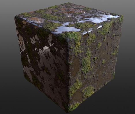 Mossy-Mud1.jpg
