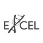 Excel Venture Management
