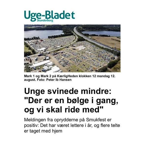 Skanderborg_unge sviner mindre.jpg