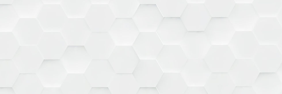 Hex-3d-smaller-01_edited.jpg