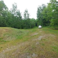 buissons terrain acces au sentier.jpg