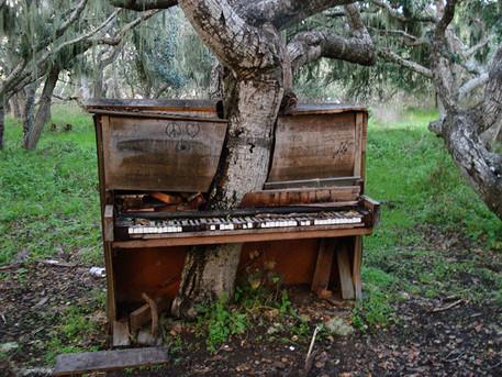 eine kleine trunkmusik