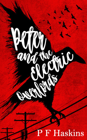 Peter and the Electric Overlords ebook cover.jpg