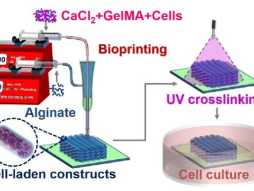 Uses of Coaxial Bioprinting