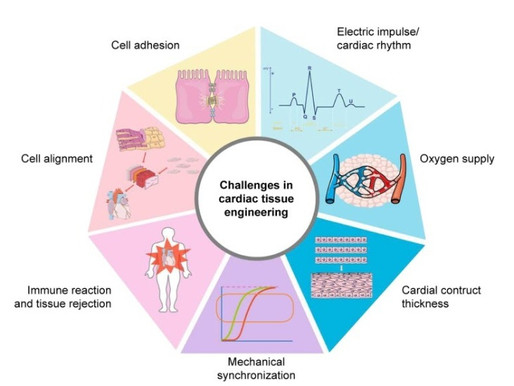 3D Printing Patches for Cardiac Regeneration