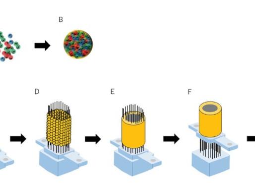 The Kenzan Bioprinting Method