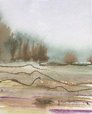 Winter Study (South Carollina Field Series)