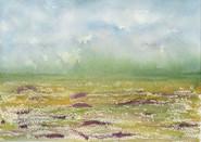 After the Rain (South Carollina Field Series)
