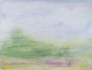 First Glance (South Carollina Field Series)
