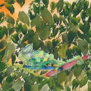Whimsical Chameleon