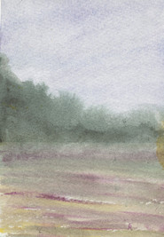 Gray Day (South Carollina Field Series)