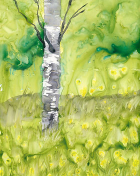 Birch-Tree-in-Spring-ElizabethR-72dpi.jp